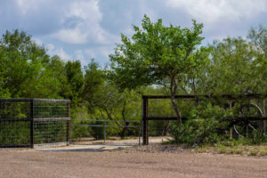 Land for Sale in Edinburg
